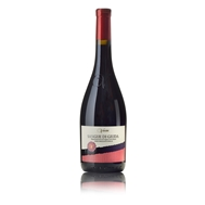 VANZINI,Winery,presents,SANGUE,GIUDA,vol.),exuberant,wine,Ruby-red,color,with,purple,and,purple,tones,and,with,sweet,and,velvety,taste.,Its,fresh,and,intense,aroma,reminiscent,the,confitures,fruit,with,notes,cherries,currants,cranberries,and,fruits,the,forest...